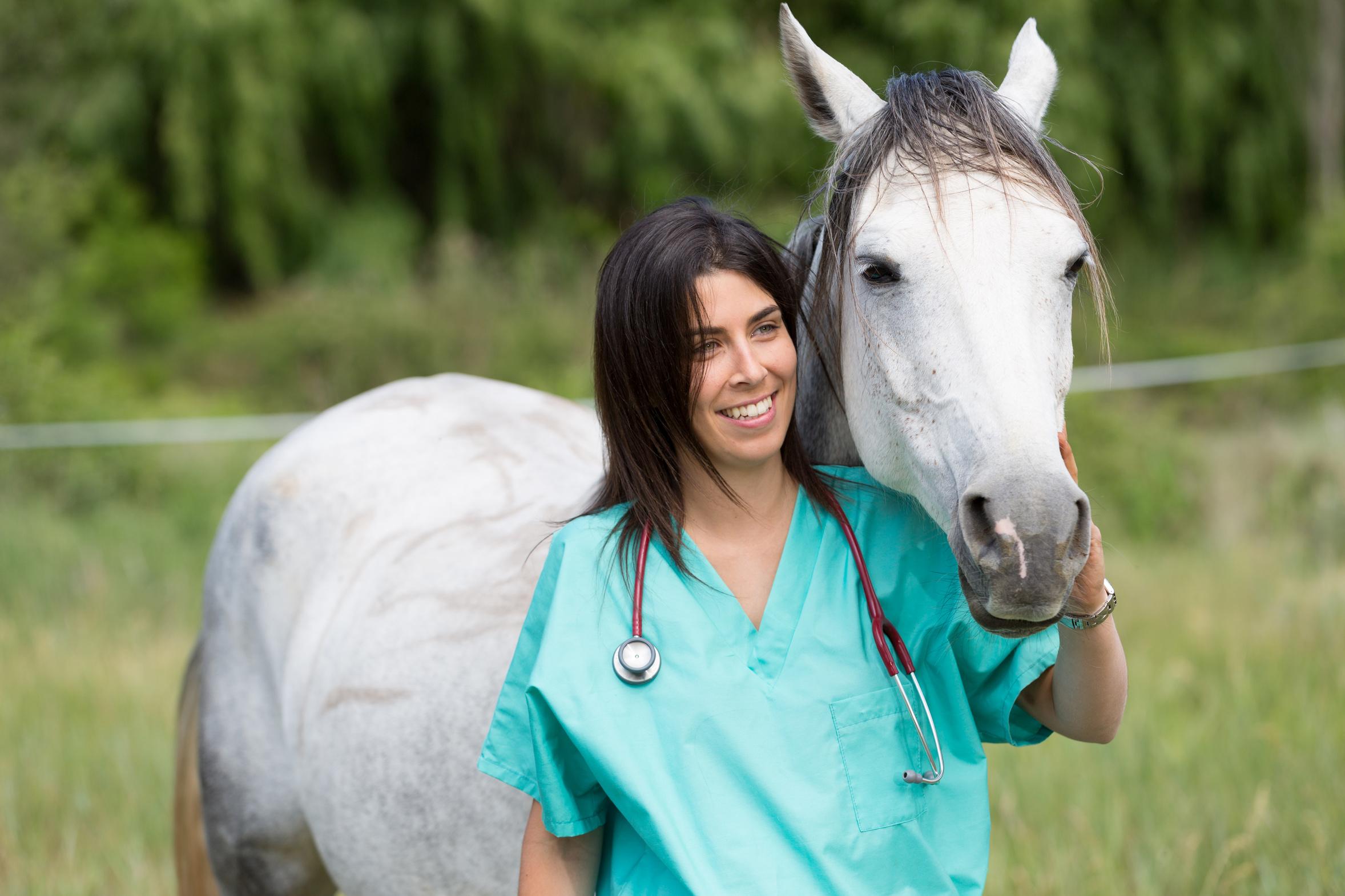 Gesundheit für Ihr Pferd