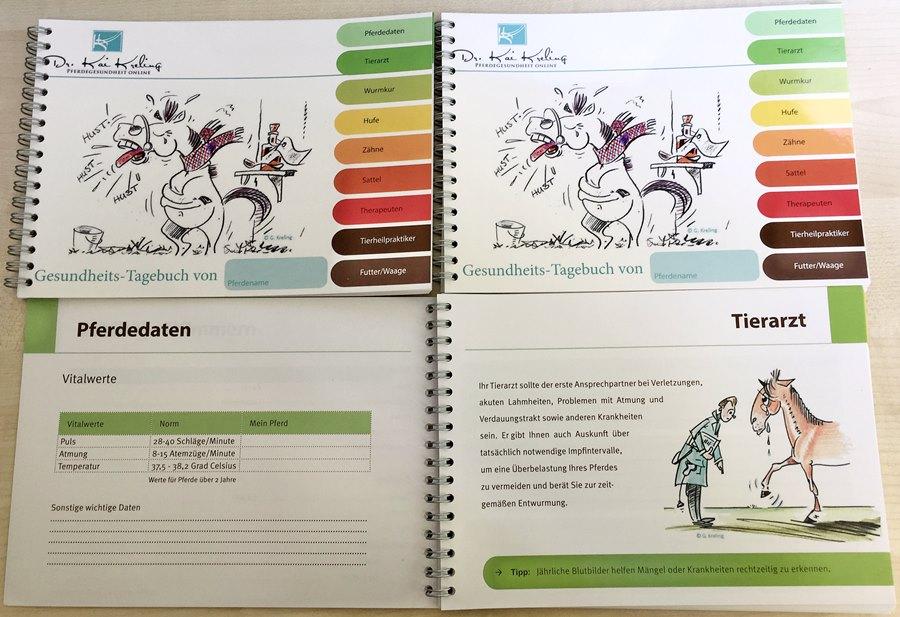 KK-Gesundheits-Tagebuch